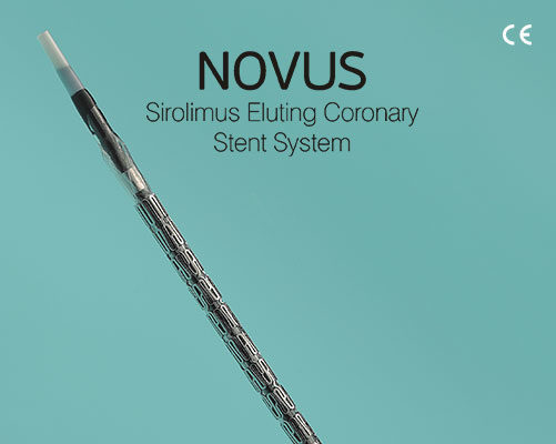 Novus – DES - Nano Therapeutics Pvt. Ltd. - Heart Stent Manufacturing Company Surat, India